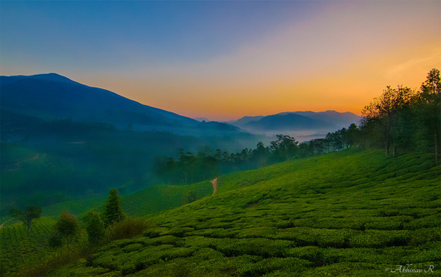 Landscape Photography - Munnar Sunrise - Photo by Abhinav R | Photovaliant