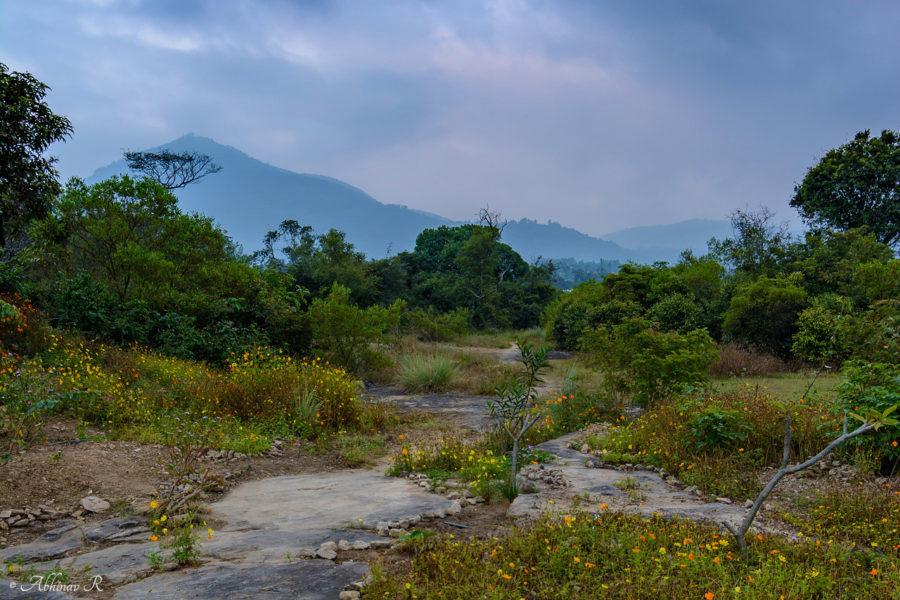 Anakkottapara-Park-Marayur-ABC_6056