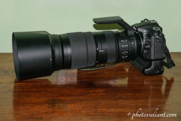 Nikon 200-500mm for Bird Photography