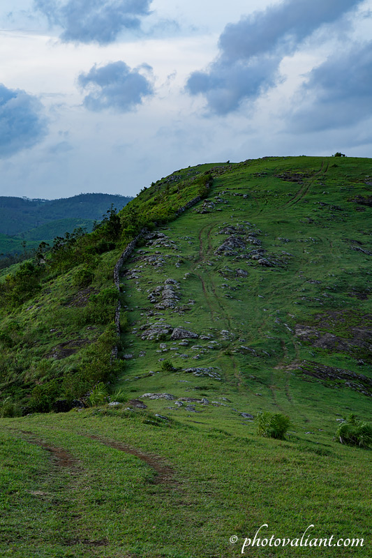 Parunthumpara meadows