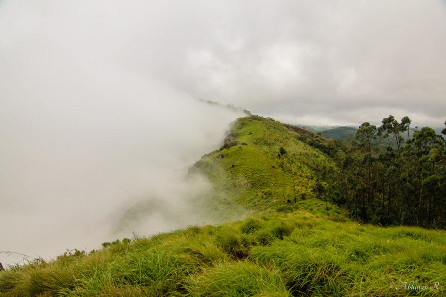 Way to the top of Lakshmi Hills, Munnar