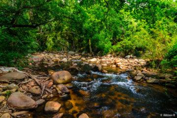Chinnar riverside