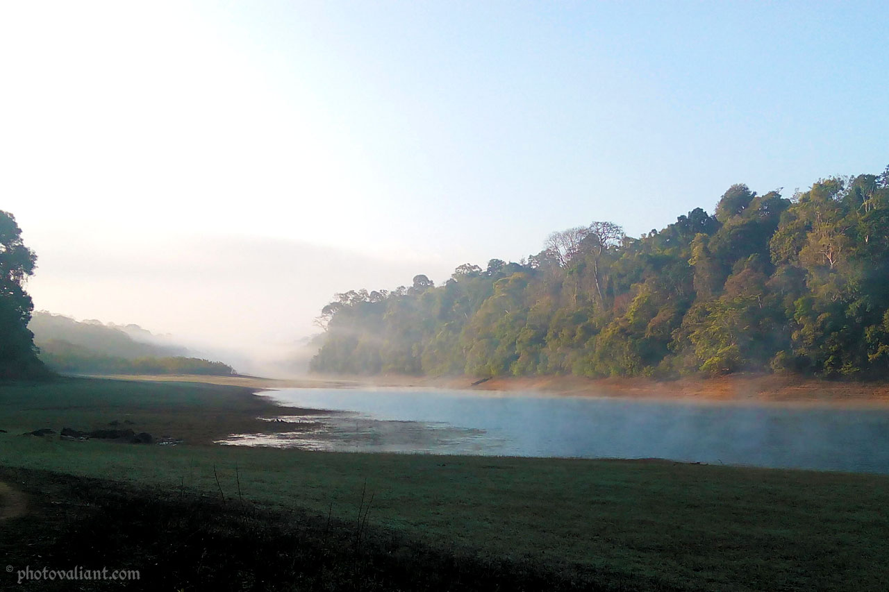 Nature walk in Periyar Tiger Reserve, Thekkady
