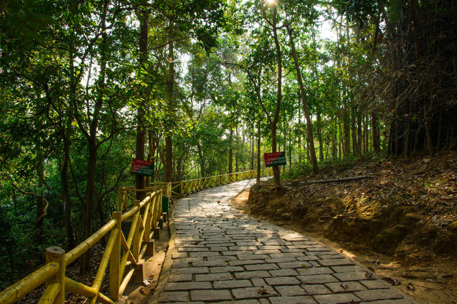 Way leading to Athirapally Waterfalls