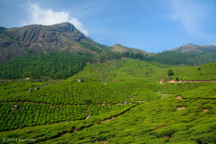 Near Devikulam Munnar