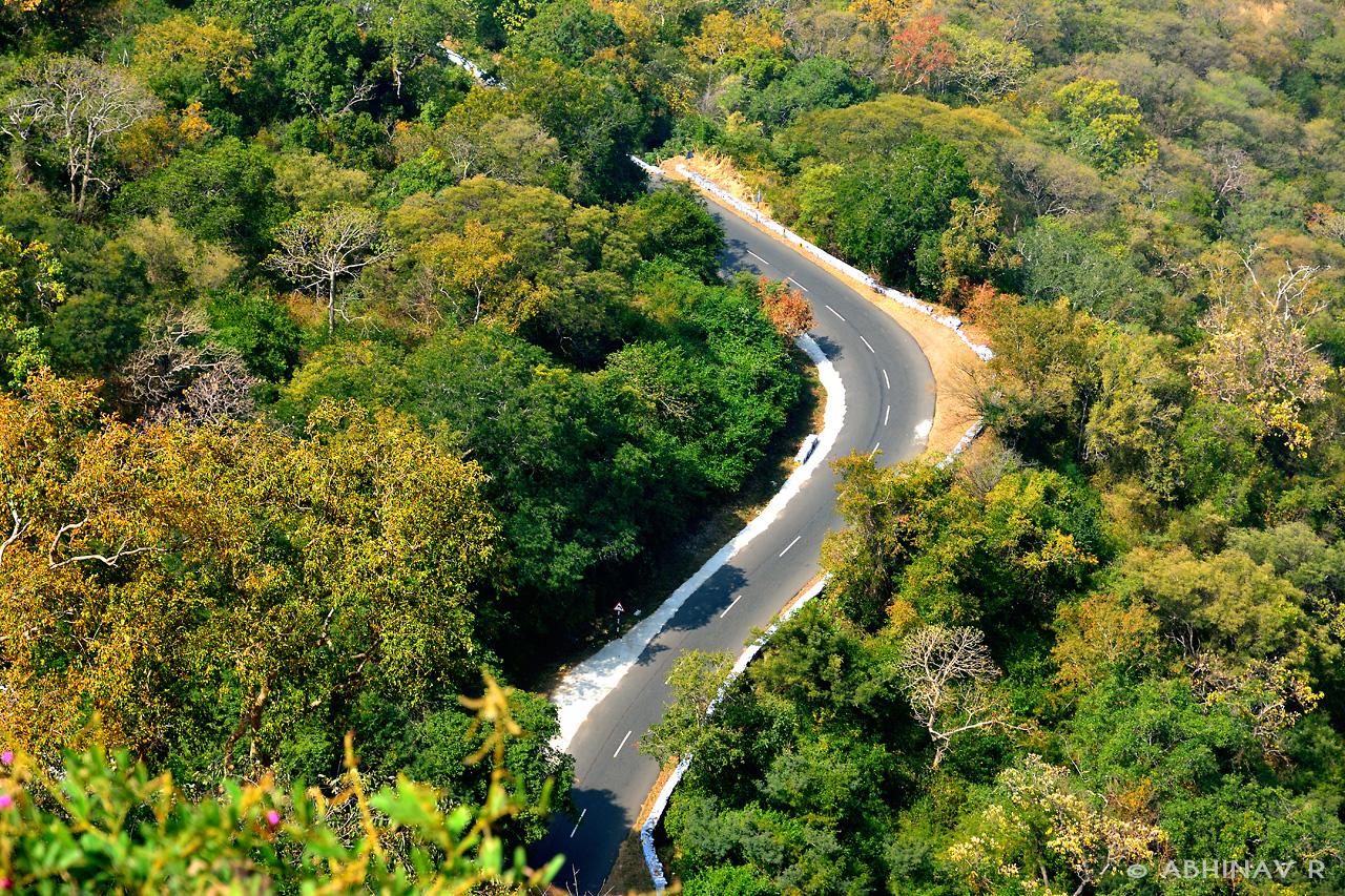 Athirapally - Sholayar - Valparai - Pollachi Road Trip