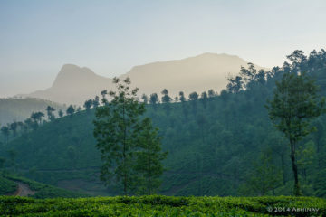 Sun Rising behind the Hills of Valparai
