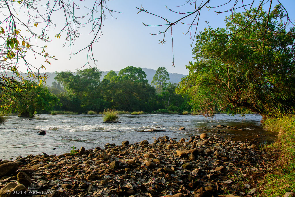 Chalakudy River Near Athirappally